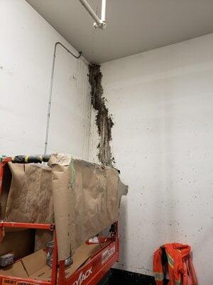 Basement Leak Repair Toronto